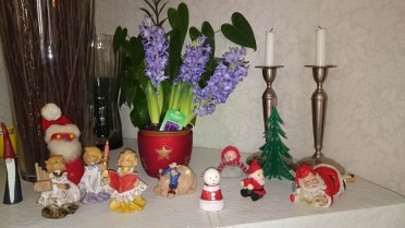 рождественский гиацинт в швеции