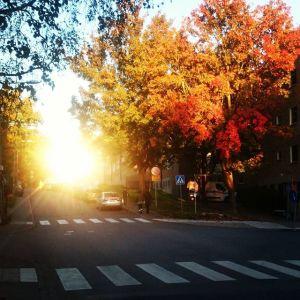 Волшебная пятница в Стокгольме, осень 2015