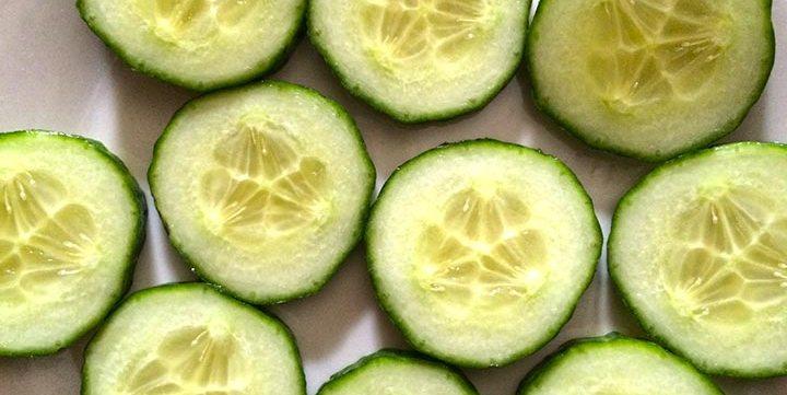 cucumber free stock image