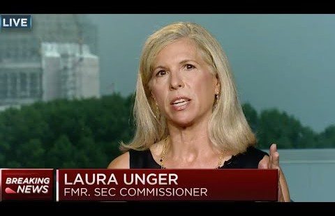 BREAKING: FORMER SEC COMMISSIONER SPEAKS ON THE SHORT SQUEEZE || AMC STOCK