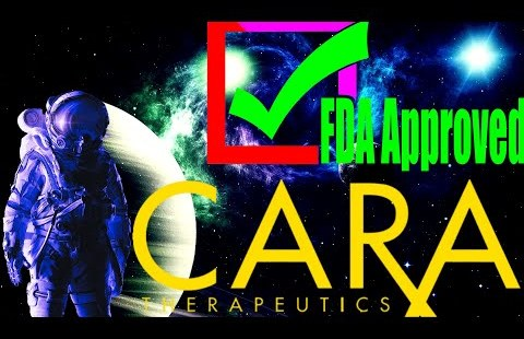 WALLSTREETBETS: 1k to 100k in 15 TRADES (CARA Therapeutics FDA APPROVED) CARA Stock UPDATE $30pt