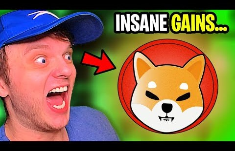 Why Shiba Inu Coin is EXPLODING! (The TRUTH)