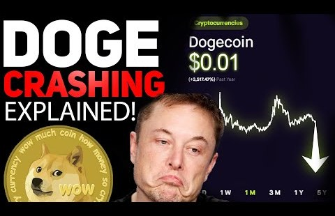 DOGECOIN IS CRASHING! HERES WHY ITS GOING DOWN!ALL HOLDERS NEED TO KNOW THIS!
