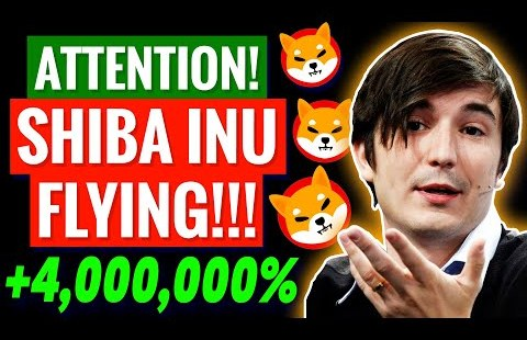 6 TRILLION Tokens Purchased by ROBINHOOD!? Shiba Inu Coin Put Prediction! Shib Data As we mutter!