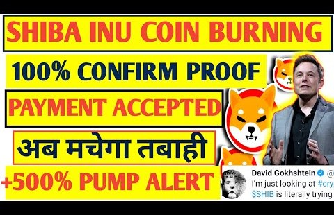🔴Pressing :😍Shiba inu coin 🔥Burning exchange | Dwell proof | shiba coin fee  accredited | latest news
