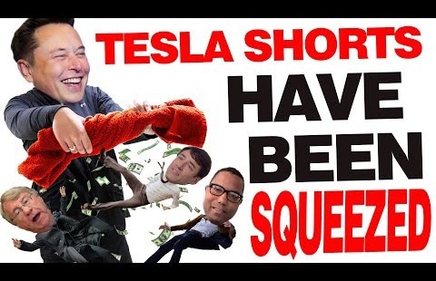 Tesla Shorts Have confidence Been Squeezed | In Depth