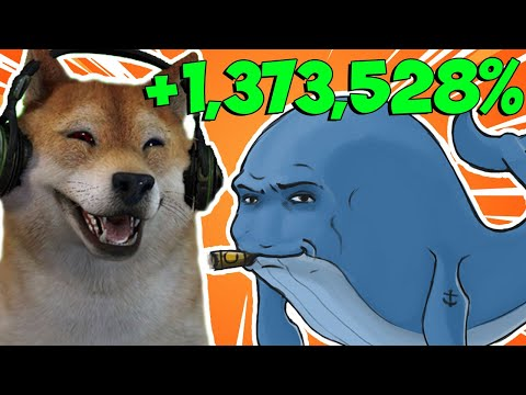 SHIBA INU COIN NEW ATH TODAY!! – WHALES BUYING IN RIGHT NOW!!