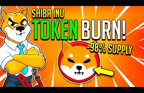 BURN ALL THE TOKENS! SHIBA INU HOLDERS WATCH IN 15 HOURS!