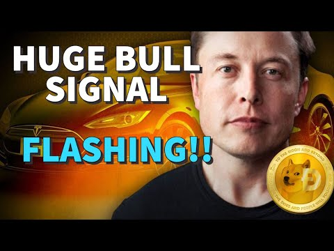 DOGECOIN WHAT'S HAPPENING? DOGECOIN DROPPING FAST ? NEWS NOW! DOGECOIN BULLISH ! DOGECOIN PRICE NOW!