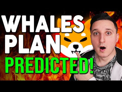 SHIBA INU COIN ! THE WHALES PLAN PREDICTED ! THIS IS WHAT HAPPENED ! BREAKING NEWS !
