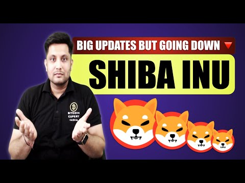 Shiba Inu – Good updates but why trace going down, What's the future ? The build is relieve or elevate zone?