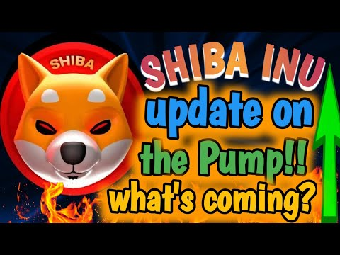 SHIBA INU! UPDATE ON THE PUMP! WHATS COMING?