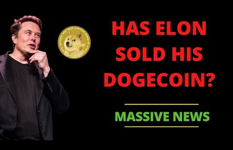 HAS ELON MUSK SOLD ALL HIS DOGECOIN?? HERE'S THE TRUTH!! | DOGECOIN NEWS