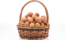 Eggs in one basket