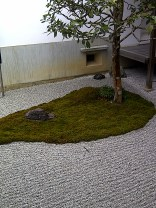 IMG-20120213-02242