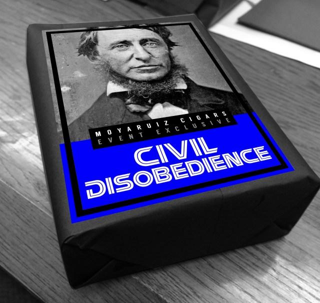 Moya Ruiz Civil Disobedience