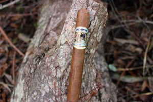 Dominion Cigars Flor De Claro