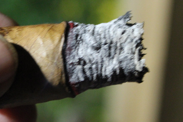 Highclere Castle Cigar