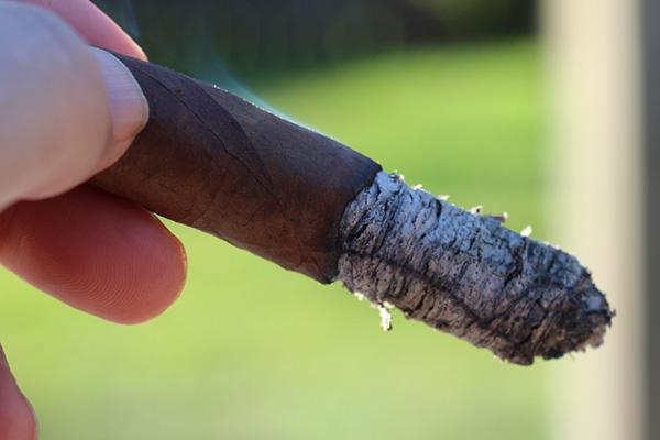 Providencia Cigars Trinitas