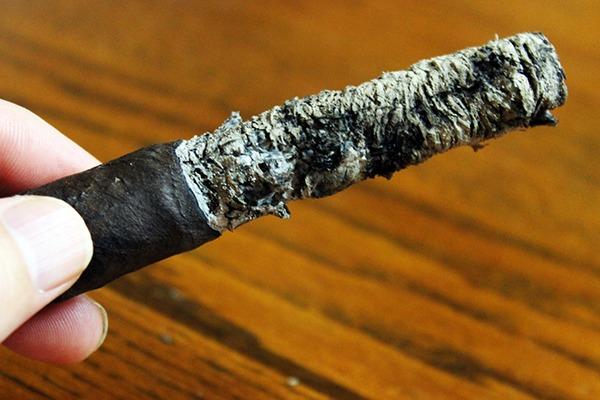 DAV Cigars Mestizo Robusto