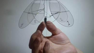 Photo of Jellyfish Drones – #141