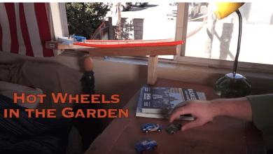 Photo of Hot Wheels in the Garden