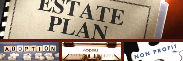 Stoltman Law creates estate plans, secures adoptions, fights on appeal, and forms non profits