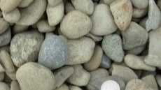 2.5 Inch River Rock – Sold Per Yard