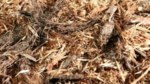 Hardwood Mulch Installation – Per Yard Spread