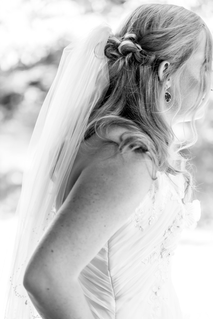 Bride Detail - Hair, Veil, Dress