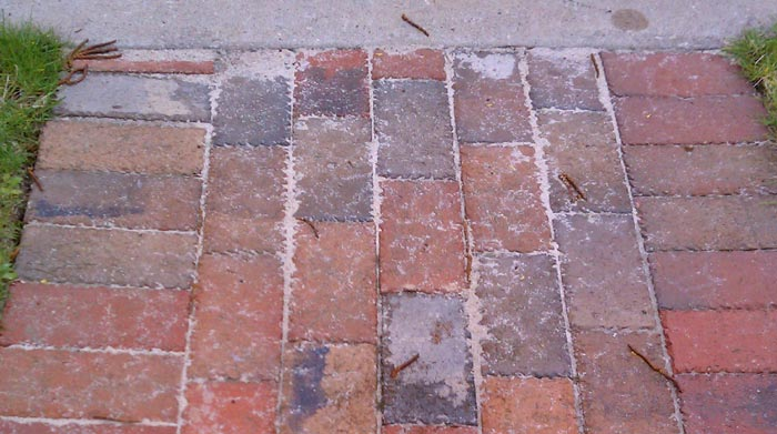 the day we switched polymeric sand
