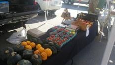 farmers-market-5