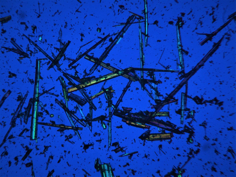 Asbestiform tremolite fibres