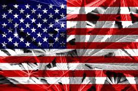 weedflaggg