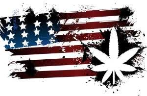 american flag weed
