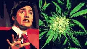canada legal weed
