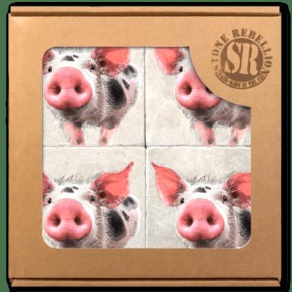 Pig Marble Coaster Box Set of 4
