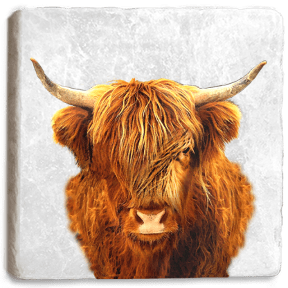 Highland Cow Marble Coaster Flat
