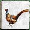 Pheasant Marble Coaster Flat