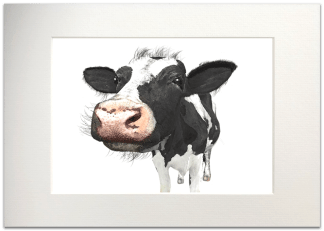 Dairy Cow Signed A4 Mounted Print