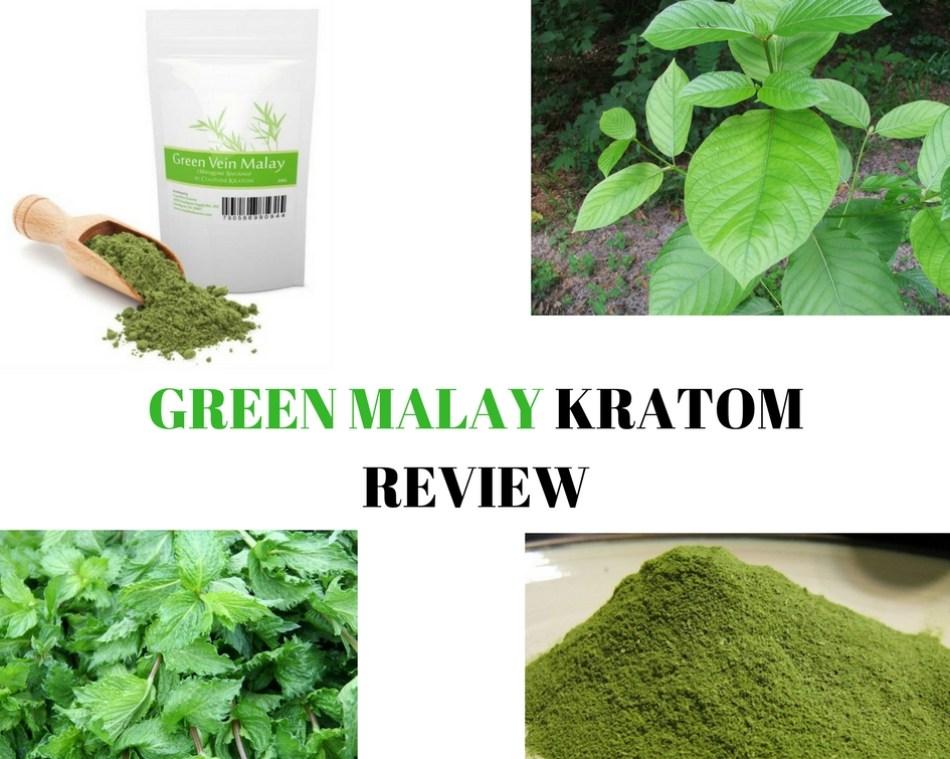 Green Malay Kratom Review