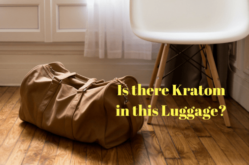 Kratom in Luggage