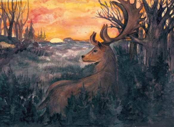King of the Forest buck watching the sunset