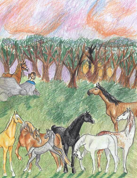 Silent Friends horses in the woods