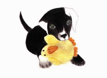 From Terror to Triumph dog with toy