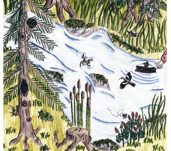 Fairy Ship river in the forest