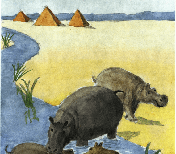 The Tale of Tawret hippos in the water
