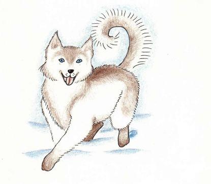 A Christmas Wish a white dog
