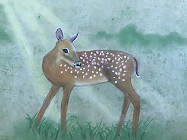 Fawn in a clearing