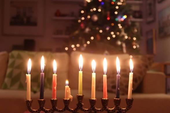 Lights of Festivity